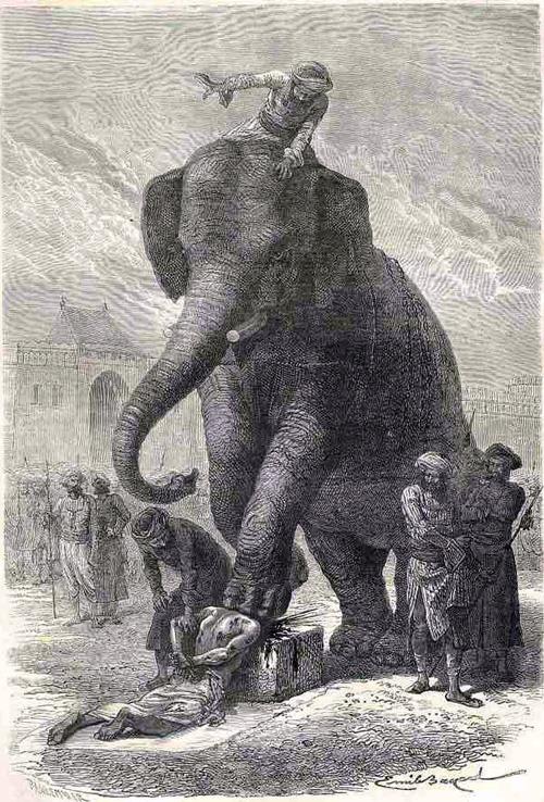 pedepse - elefany